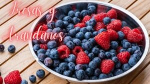 hoponopono fresas y arandanos