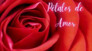 hoponopono petalos rojos de amor